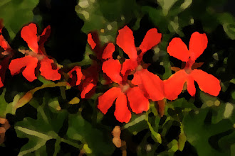 Photo: Palette knife (17-3-3) - red geraniums