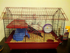 Photo: better picture of the cage