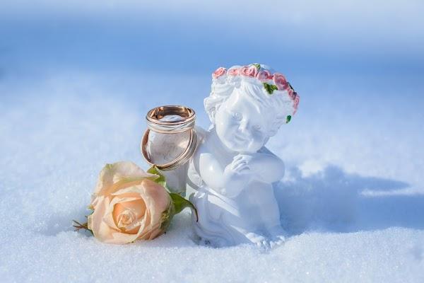 Свадебный фотограф Мария Вербина (vmeri). Фотография от 18.02.2017