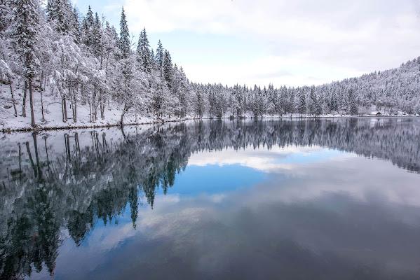 Paesaggio invernale di Peter_Sossi
