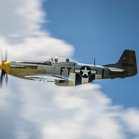 Angel's Playmate by Ron Malec - Transportation Airplanes ( north american, mustang, warbird, p-51, merlin )