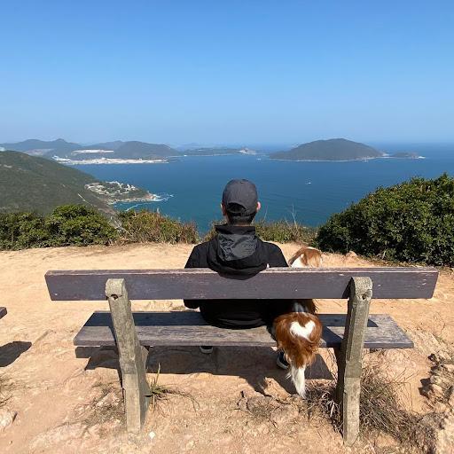 user David Tio apkdeer profile image