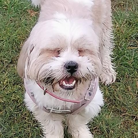 Amy Doyle's avatar