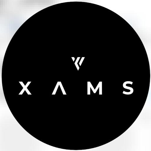 Omar Chamoun