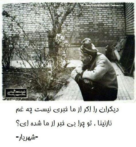 Mehran Motallebi