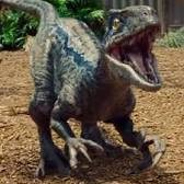 user The Raptor King apkdeer profile image
