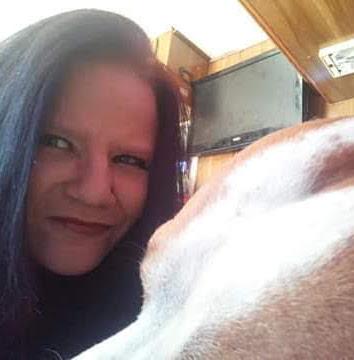 user Chrissy Davis apkdeer profile image