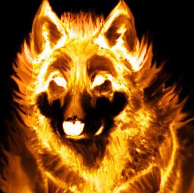 Firedog106