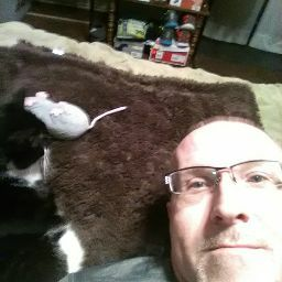 user Jeff Atkins apkdeer profile image