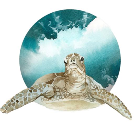 faith Brunyee's avatar