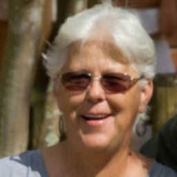 user Sue Davis apkdeer profile image