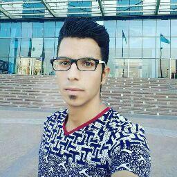 محمد رضا جنگجو