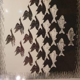 Tim Nijsmans