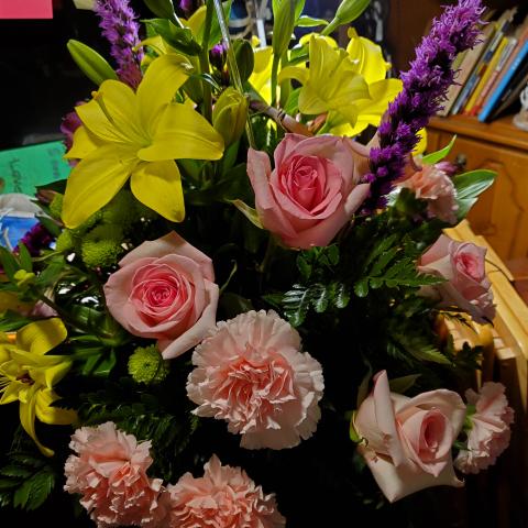 user Joyce Moore apkdeer profile image