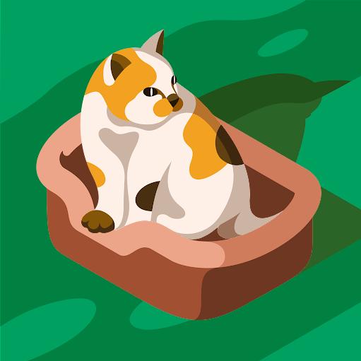 Priscila Folly picture