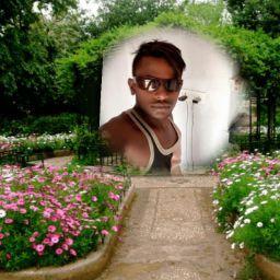 user Shivendra Kewat apkdeer profile image
