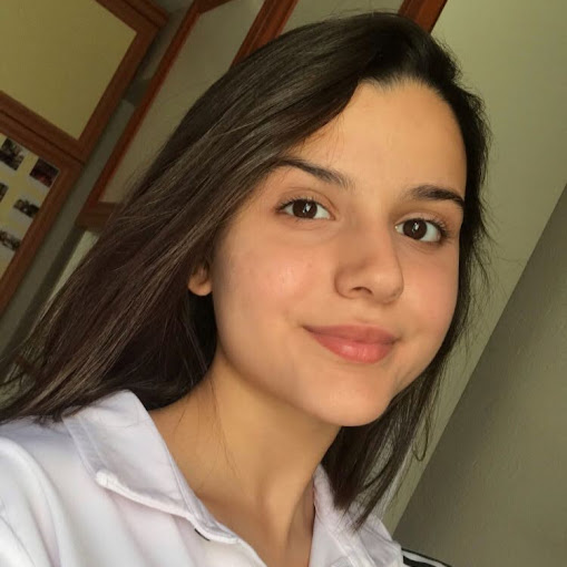 Aleyna Beki's avatar