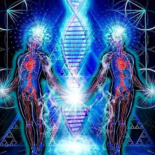 Universo Quantico