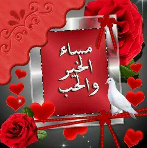 محمود جنيدي