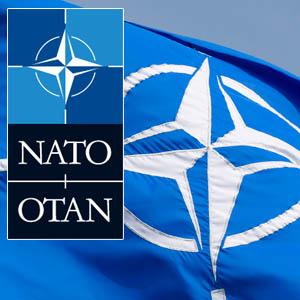 NATO  Google+ hayran sayfası Profil Fotoğrafı