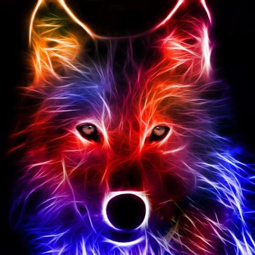 זאב בודד's avatar