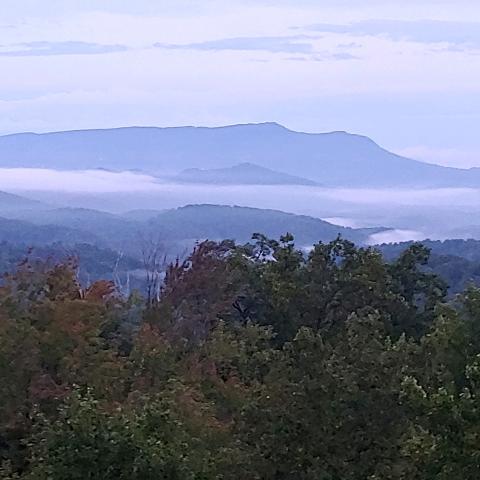 user awesome youtuber 3210 apkdeer profile image