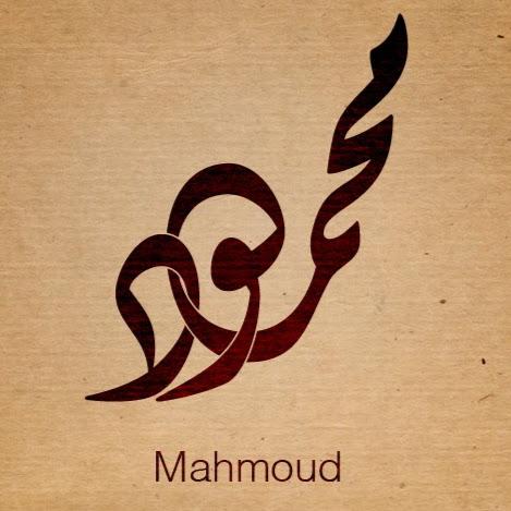 Mahmoud Abdulmoniem picture