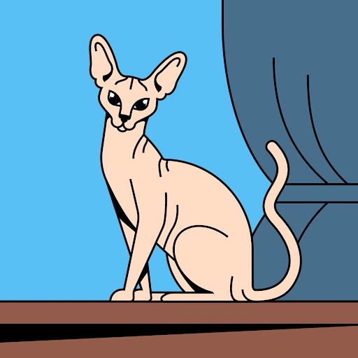 Shreeya Chand