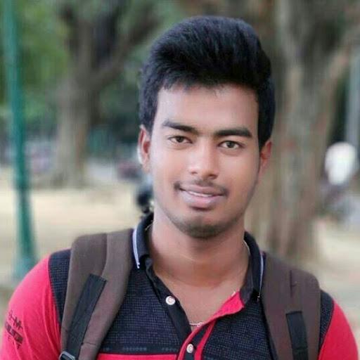 Subhankar Raja