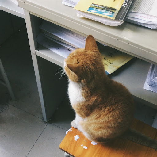 Yuanming Wang