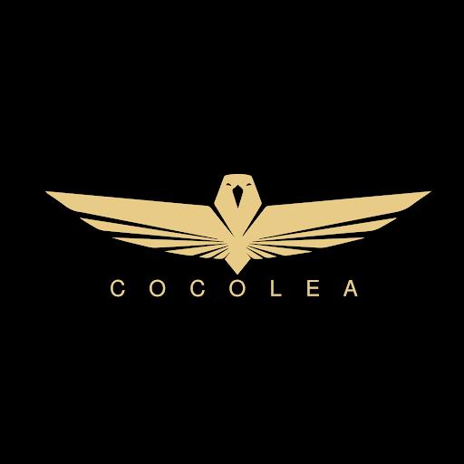 Dorina Cocolea