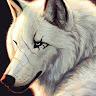 fj20010424 avatar
