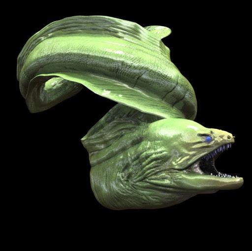 hannah stewart's avatar