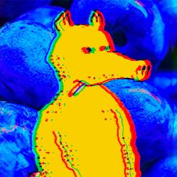 King Lemn's avatar