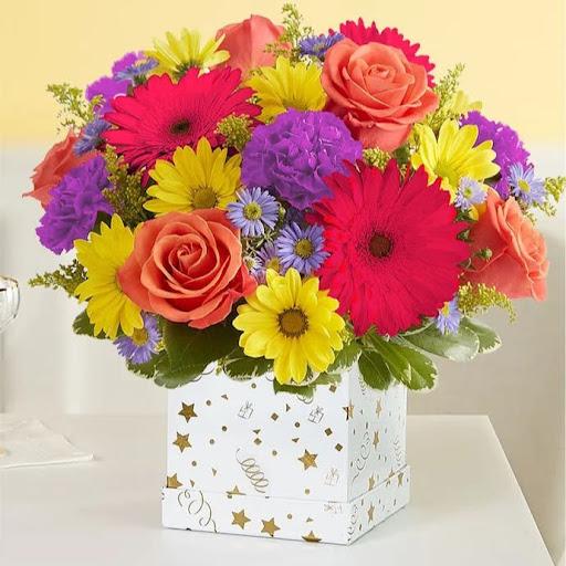 user Karen Sparks apkdeer profile image