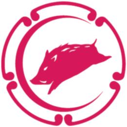 flight's icon