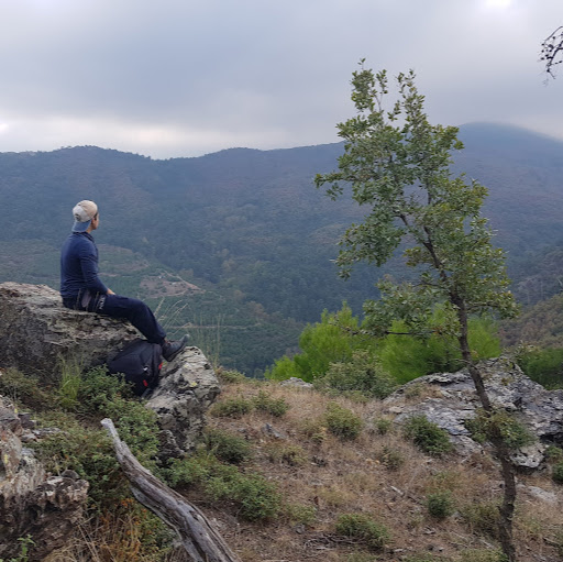 Batin Gulec picture