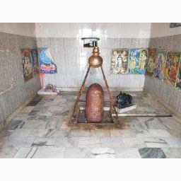 user Gayatri Sharma apkdeer profile image
