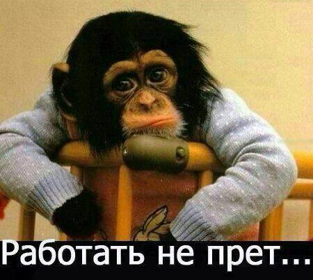 Vladislav Voron join