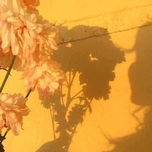 user itz Chika Chanz apkdeer profile image