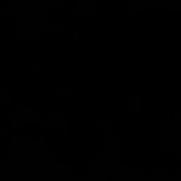 NAZIM REHIMOV