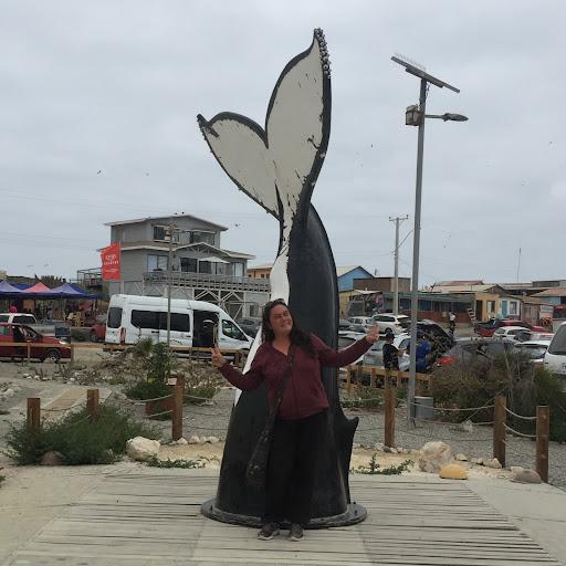 Claudia Reinaud