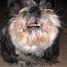 Diego Somoza's profile image