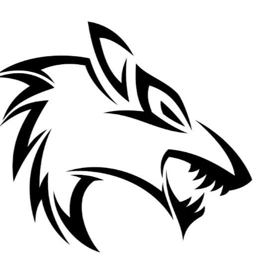 user T TG apkdeer profile image
