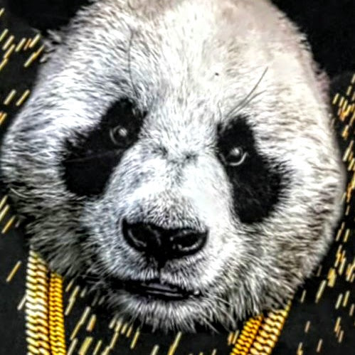 user Brian Blanchard apkdeer profile image