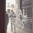 Digital Geckos