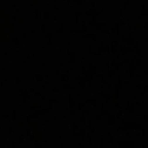 linus's icon