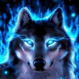 user ytking PETTIGREW apkdeer profile image