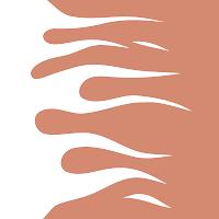 SpeedFire avatar