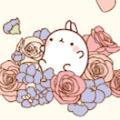 Luigi Kim's profile image